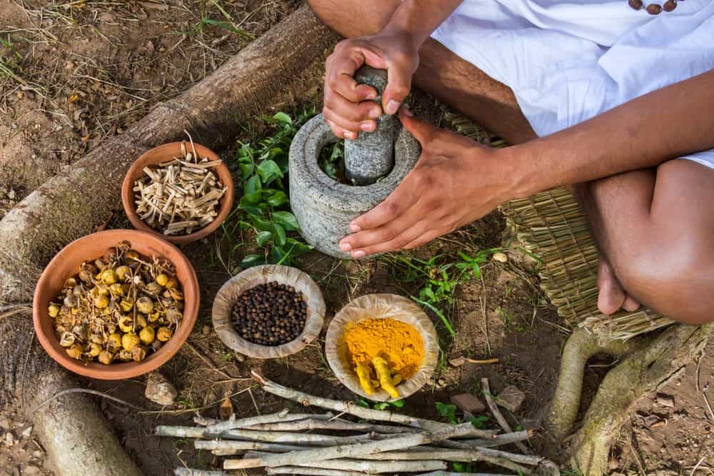 A Primer on the Healing Science of Ayurveda 8
