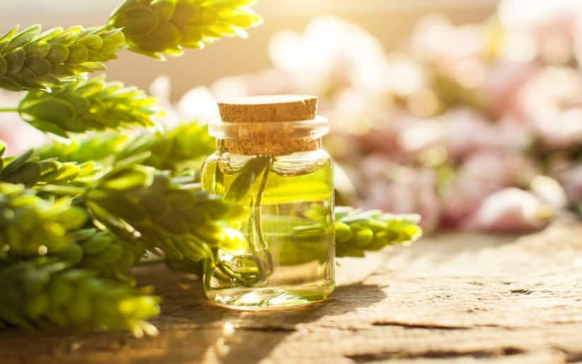 What is Tea Tree Oil