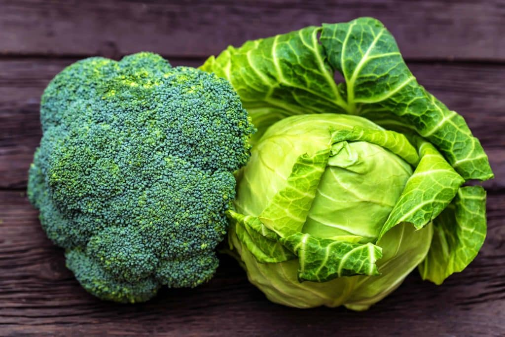 broccoli and cabbage
